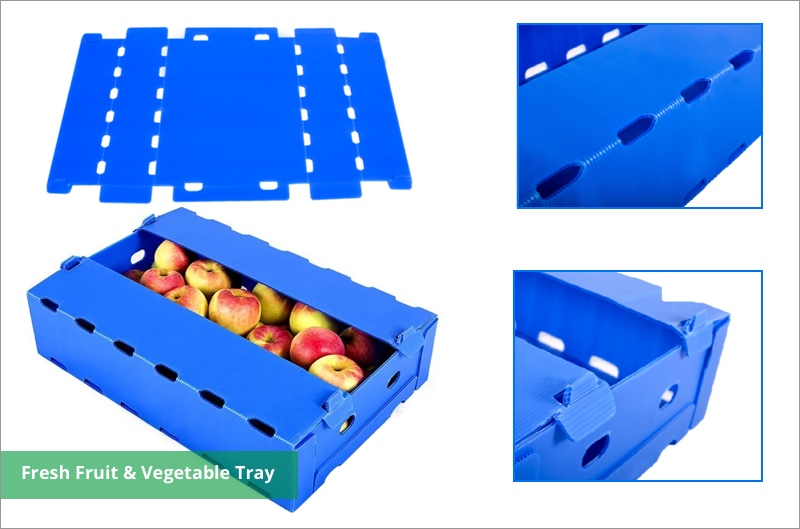 furit storage plastic box