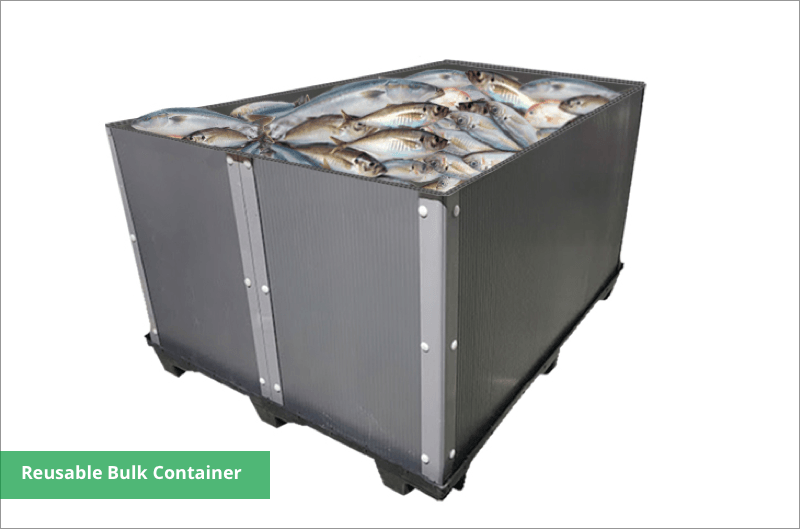 extra large fish storage box