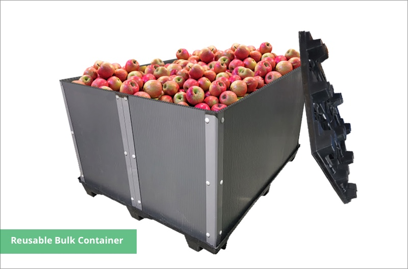 fruit storage pp container box